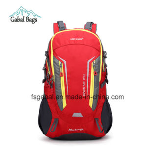 Camel Moutain Nylon Backpack for Sports Hiking School Laptop pictures & photos