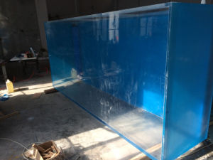 Super Large Plexiglass Aquarium Manufacture Mr371 pictures & photos