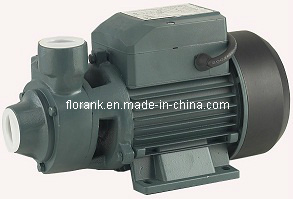 Popular Good Quality Vortex Pump with CE (QB series) pictures & photos