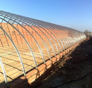 The Cheapest Sainpoly Solar Greenhouse pictures & photos