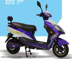 Hot Selling Electric Scooter/Electric Motorcycle pictures & photos