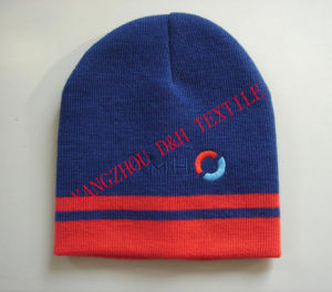 Promotional Beanie/Winter/Knitted Hat (DH-LH7687) pictures & photos