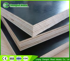 18mm Film Faced Plywood Construction Plywood pictures & photos