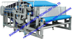 Large-Capacity Fruit Juice Extractor/Fruit Juicer pictures & photos