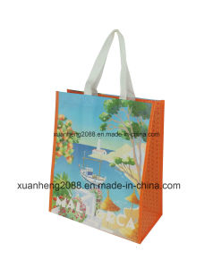 Hot Sale Recyclable PP Non Woven Bag pictures & photos