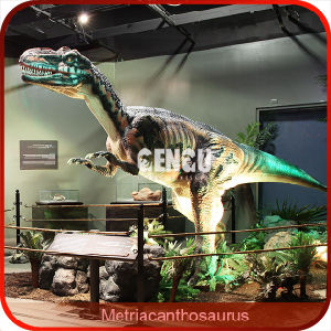 Custom Animatronic Model for Dinosaur Museum pictures & photos
