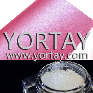 Silverwhite Pearlescent Pigments/Glitter White Powder for Paper Paint (YT1005)