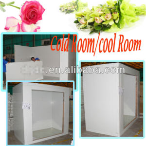 Walk in Flower Storage Cold Room pictures & photos