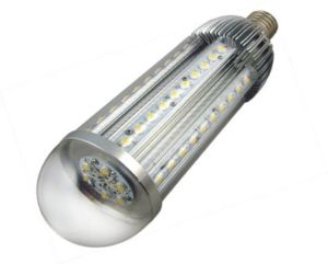 LED Garden Light (YL-GL-100W with External Driver)
