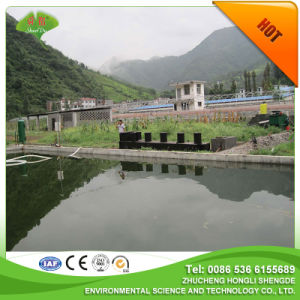 Chinese Combined Sewage Treatment to Dislodge Tanning Wastewater Sundries pictures & photos
