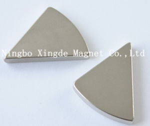 Rare Earth Permanent Arc Magnet