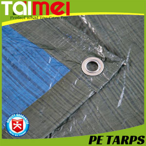 Silver/Green Waterproof PE Tarpaulin in Middles East Market pictures & photos