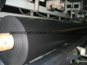 1.0mm Thick Fish Pond Liner HDPE Geomembrane pictures & photos