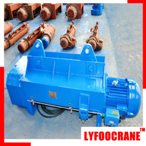 5t Wire Rope Hoist with Ce Certificated pictures & photos