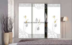 Provide Wardrobe Glass, Armoire Glass, Garderobe Glass, Clothespress Glass pictures & photos