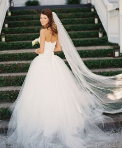 Elegant Tulle Chapel Length Long Bridal Veil with Cut Edge pictures & photos