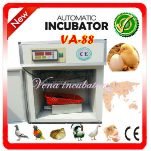 Holding 88 Eggs Automatic Egg Incubator, Small Ostrich Egg Incubator pictures & photos