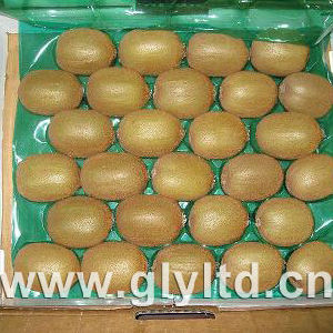 Exported Quality Chinese Fresh Green Kiwi Fruit pictures & photos