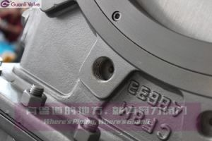 All Ss304 Bonnect Bolted Knife Gate Valve pictures & photos