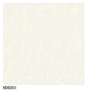 Soluble Salt Porcelain Tile 600X600 800X800 pictures & photos