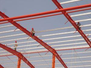 Light Steel Structure Workshop/Warehouse/Farm pictures & photos