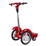 Electric Bicycle (ZLEB-04)