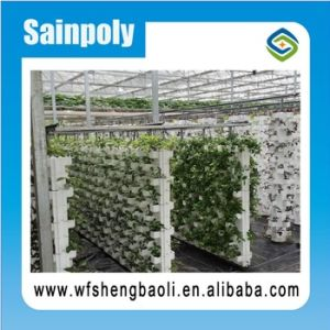 Low Price and Cost Sainpoly Greenhouse Hydroponics System pictures & photos
