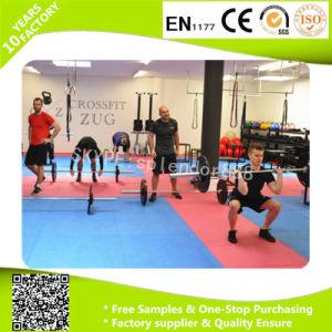 Dance Mat EVA Playroom Flooring pictures & photos