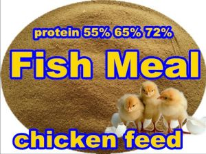 Grade One Fish Meal with High Protein for Animal Feed pictures & photos