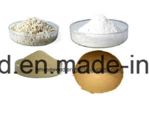 Textile Printing Sodium Alginate