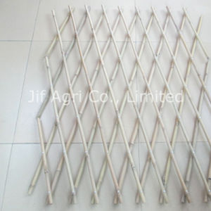 High Quality Bamboo Fence for Garden Decoration pictures & photos
