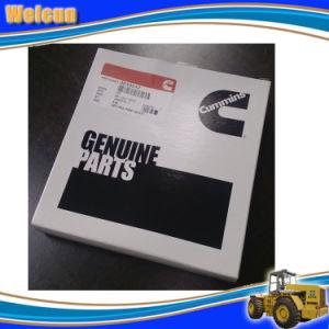 Kta50 Engine PT Pump Repare Kit 3010242 pictures & photos