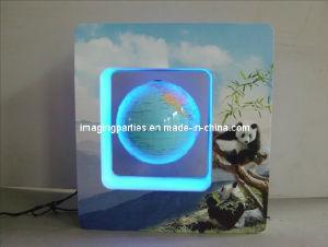 Magnetic Floating Globe (IMG100)