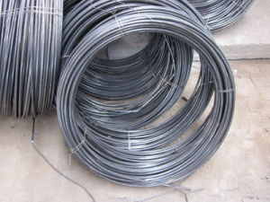 SAE1006 /1008 5.5mm Low Carbon Steel Wire Rod pictures & photos