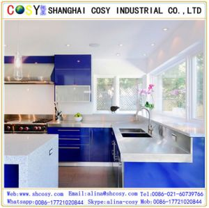 Customized Plexiglass Wall Panel with Colorful Cast Acrylic Sheet pictures & photos