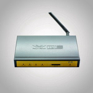 450MHz 800MHz CDMA Router RS232 RS485 Ethernet Port for Pipe Monitoring (F3223V)