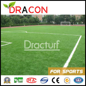 High Quality Artificial Grass (G-6005) pictures & photos