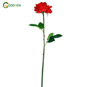 Real Touch Rose Artificial Flower
