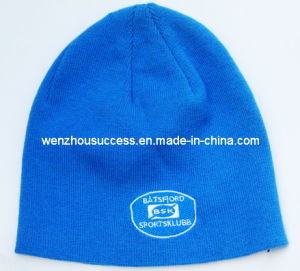 Knitted Beanie Hat (SS12-CK369) pictures & photos