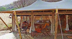Sahara Safari Tent 5X10m Glamping Tent for Service Centre pictures & photos