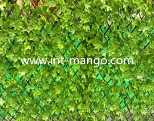 Green UV Protection Artificial PE Leave Willow Hedge (MW16014) pictures & photos