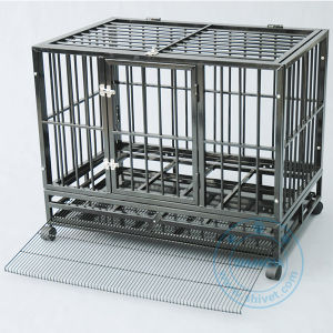 Square Pipe Dog Cage (CG058A) pictures & photos