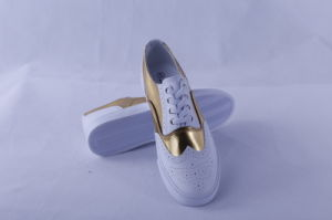 Vulcanized Shoes Rubber Outsole PU Upper Bz1626 pictures & photos