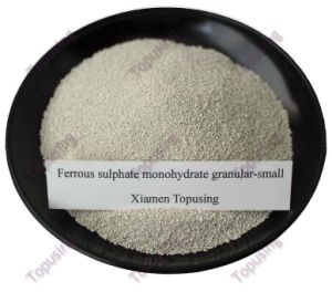 Ferrous Sulphate Monohydrate Small Granular Fe30% pictures & photos