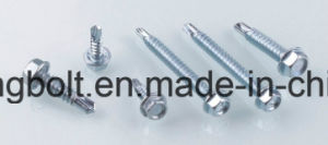 Hex Washer Head Self Drilling Screw, Reduced Point 1#, with Bonded Washer, Head Painted pictures & photos