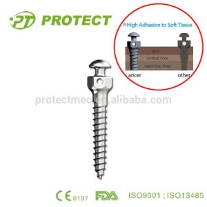 Protect Orthodontic Dental Titanium Implant Screws for Sale pictures & photos