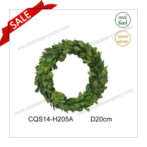 D20cm Big Preserved Boxwood Wreath Home Decoration Gift pictures & photos