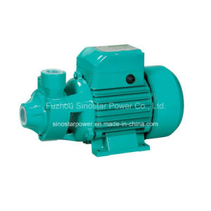 110V/220V Qb Series Electric Pump Bombas for Home Use pictures & photos