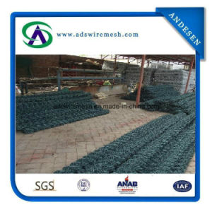 Wholesale Easily Assembled PVC Coated Chain Link Fence pictures & photos