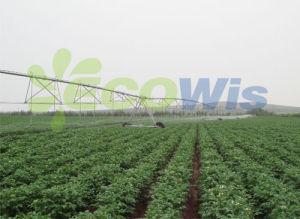 Large Farmland Centre Pivot Irrigation System pictures & photos